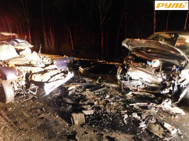 Натрассе «Минск— Гродно» лось бросился под «Фиат», шофёр умер